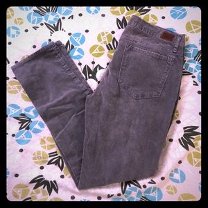 BDG Grey Corduroy Pant